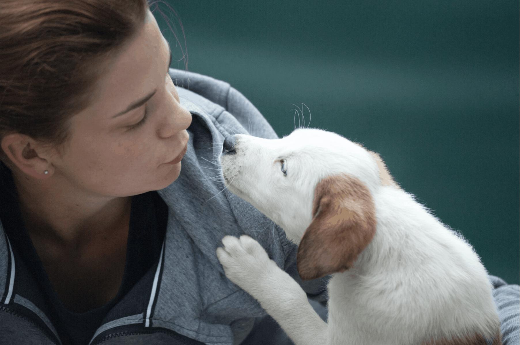 Tierschützer kümmern sich liebevoll um ihre Schützlinge.