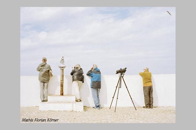 "Featured image for ""KATALOQ: Kunst und Politik"""