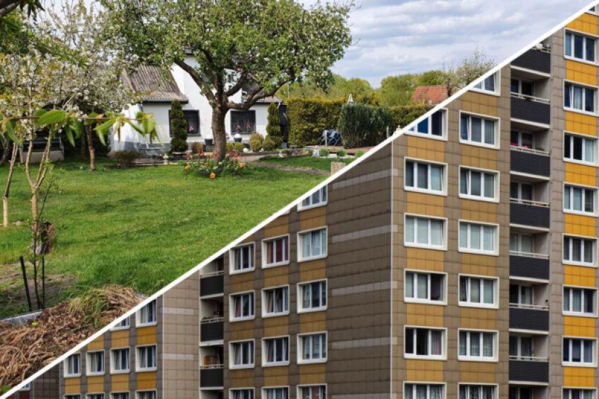 """Featured image for """"Die Angst um den Kleingarten als zweites Zuhause"""""""